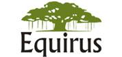 Equirus Capital